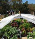 Téli növénytakaró szövet, növények fagy elleni védelmére