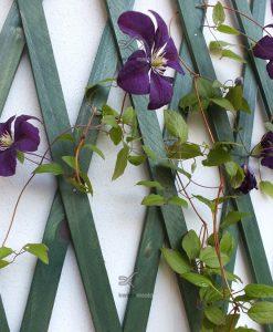 Virágfuttató rács